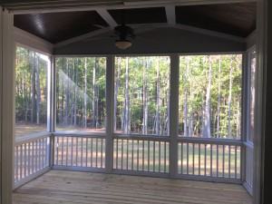 Screened porch views
